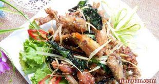 cac-mon-ech-anh1-iunauan.com-cgnxvx420067500